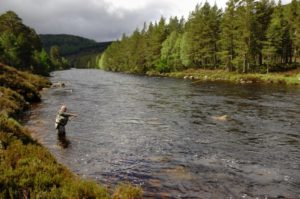 Enforcement notice given to AWPR contractors following River Dee Pollution.