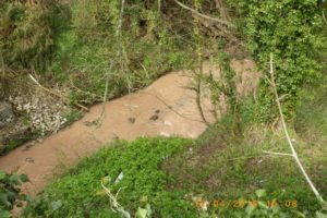 Investigation after Silt Pollution of Two Flintshire Streams Identified