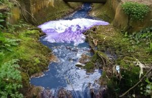 Corrugated firm fined for turning river purple