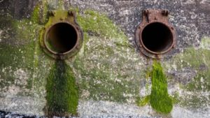 Wessex Water pays £975,000 after sewage spills