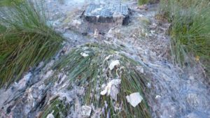 Severn Trent Water fined £500K for raw sewage spill