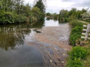 Falling oxygen levels are causing 'fish kills' in the Leeds and Liverpool Canal