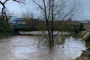 Edinburgh flooding: Anxious local residents share fears as Water of Leith rises above trees